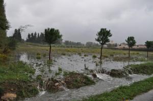 saint-genis-des-fontaines zone inondable